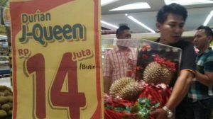 Heboh, Buah Durian Seharga Rp. 14 Juta Rupiah