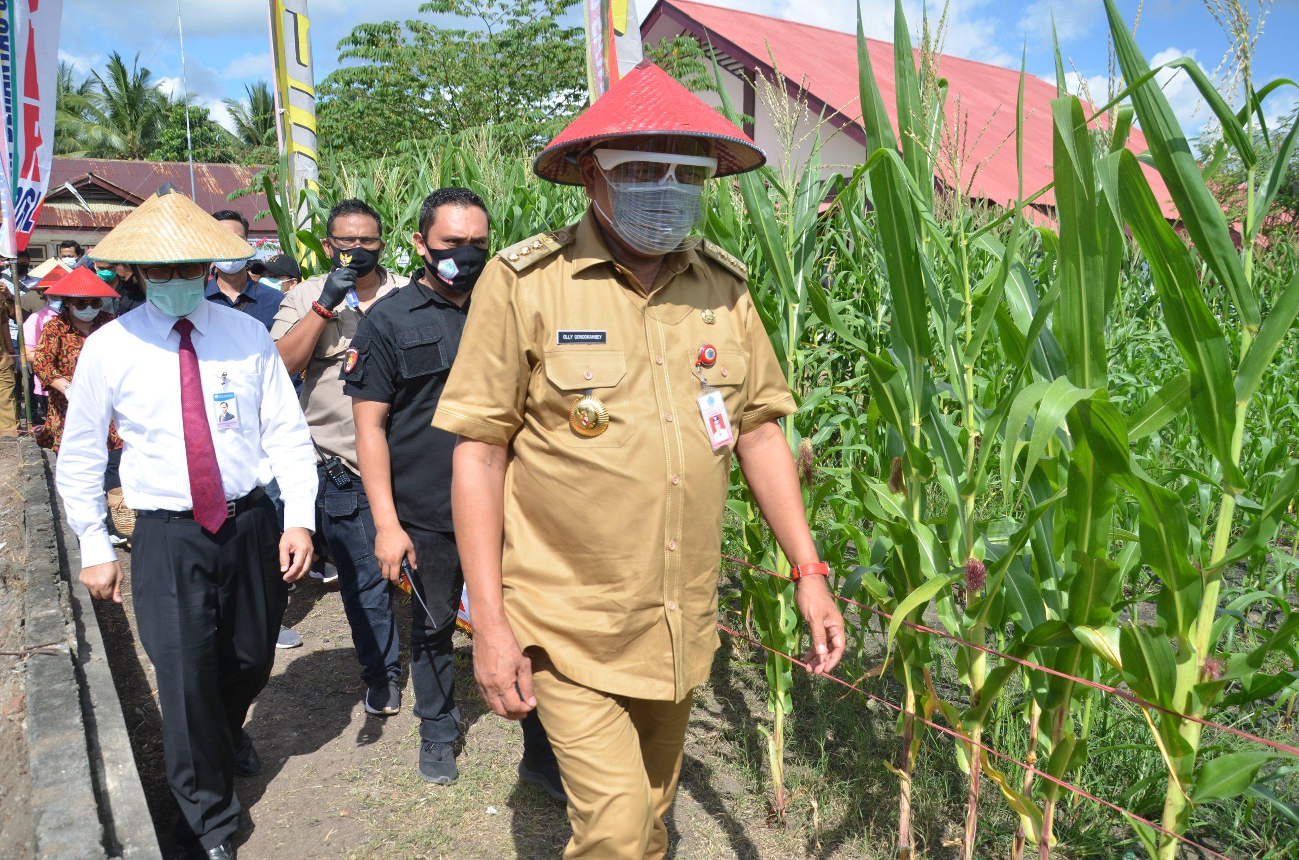 Gubernur Sulut Olly Dodokambaye