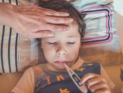 Pahami Gejala dan Cara Mencegah Demam Berdarah Dengue