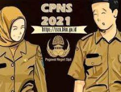 Pemkab Bolsel Umumkan Hasil Seleksi Pelamar CPNS dan PPPK Non Guru, Ini Nama-namanya